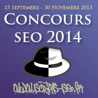 concours-seo-2014